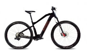 XE10 e-Bike 10v